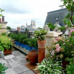 Aménager un toit terrasse à Vertou